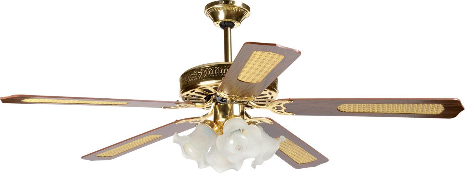 Montaggio Lampadario Con Ventilatore.Ventilatore Da Soffitto Con Luce 5 Pale O 140 Cm Lampadario 5 Velocita Con Comandi A Muro Ho Vsl14044