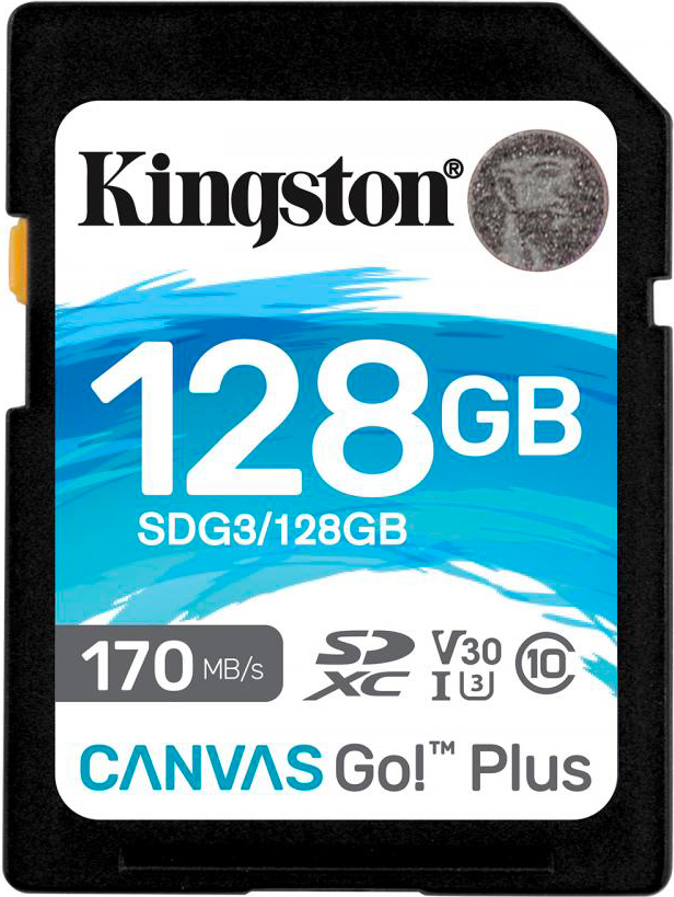 KINGSTON SDG3128GB Scheda di Memoria 128 GB SDXC Classe 10  Canvas Go! Plus