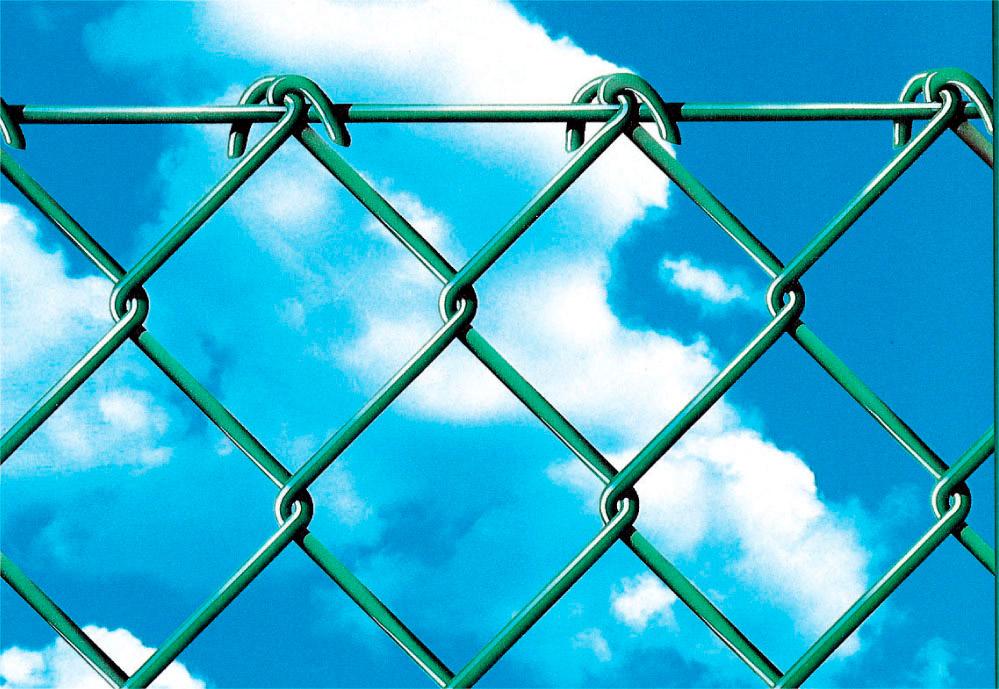 Rete Recinzione Zincata.Rete Per Recinzione Plastificata Zincata Maglia Sciolta 50x50 Mm Altezza 175 Cm Rotolo Da 25 Mt Colore Verde Simplex Plax