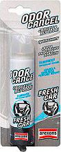Arexons 1928 Deodorante Auto spray elimina odori profumo Fresh Car  Odor Cancel