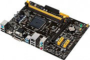 Asus Scheda Madre Socket AMD AM1 per APU Sempron  Athlon Micro-ATX AM1M-A