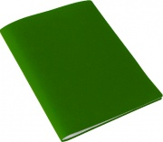 Beautone D335610 Portalistino PPL 60 Buste Verde