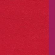 Blanco Raya 2911 Telo Mare Microfibra a Tinta unita 90x160 cm Rosso  Bordeaux