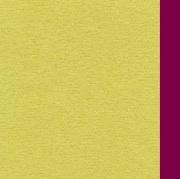 Blanco Raya 2911 Telo Mare Microfibra a Tinta unita 90x160 cm Verde  Prugna