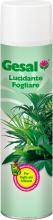 Compo Italia 2677102005 Gesal Lucidante Fogliare Spray ml 750 Pezzi 12