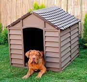 NBrand Cuccia per Cani esterno plastica cm 78X84X6080H BEIGEMARRONE