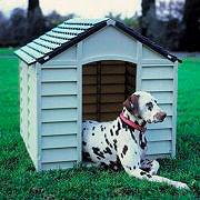 NBrand Cuccia per Cani esterno plastica cm 78X84X6080H Beige  Verde