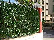 Giardini del Re Siepe Artificiale Finta Arella Sempreverde Sintetica Erba Lauro 300x150