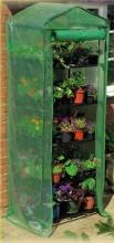 Garden Friend S1144716 Serra 5 ripiani pomodori finestra in pvc da giardino