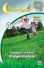 Hortus Sementi Seme Prato Inglese per terreni difficili 1 Kg 80SBL603 Prato Calpestabile