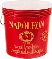 Icorip Napoleon Pittura Semilavabile Traspirante colore Bianco confezione 5 lt