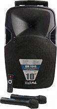 KARMA BM 1010 Cassa Amplificata Diffusore Pavimento Altoparlante Speaker USB 100W
