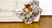 Kanguru Coperta Plaid in Microfibra 100x150 cm + Cuscino Osso Cani Dog Set Bau