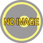 Mital 42EU.001035.36 Reggimensola Regolab. mm 6 10  B Cromo Lucido  Pezzi 12