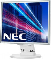 Nec 60003581 Monitor PC 17 Pollici 1280 x 1024 VGA 250 cdm² DVI