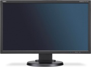 Nec 60004376 Monitor PC 23 Pollici Monitor Full HD VGA 250 cdm² DVI