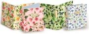 Pigna 54796 Confezione 5 Cartella Anell Nature Flowers A4