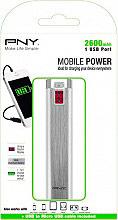 Pny Caricabatteria portatile Smartphone 2600 mAh Alluminio - P-B2600-1S02-RB