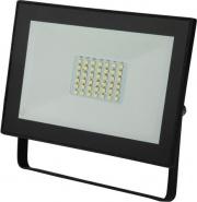 Polypool PP3132 Faretto proiettore LED 30 watt