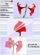 RGV Affilalama per Coltelli Forbici - 9168