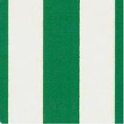 Robert Plast TS21030 Tenda da sole per Esterno 145x300 a Righe Verde