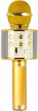 Xtreme 27837K Speaker Bluetooth con Microfono Integrato Karaoke Oro  Hollywood