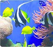 fellowes 5909301 Tappetino per mouse Mousepad Estetica Pesci Tropicali 5904601 Earth