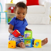 fisher price CDC52 Everything Baby giocattolo educativo